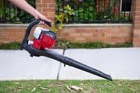 Как выбрать садовый пылесос (воздуходувку)