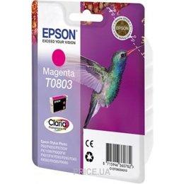 Epson C13T08034010
