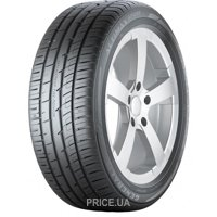 Фото General Tire Altimax Sport (205/55R16 91V)
