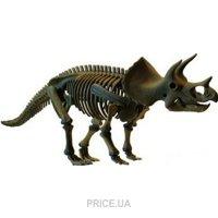 Фото Dino Horizons Скелет Трицератопса (D502)
