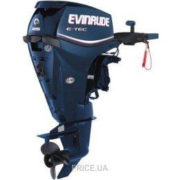 Evinrude E 25 DTE