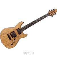 Фото Fernandes Dragonfly Spalted