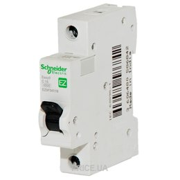 Фото Schneider Electric Easy9 (EZ9F34116)