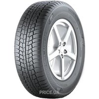 Gislaved Euro Frost 6 (195/55R16 91H)