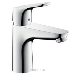 Hansgrohe Focus 100 31607000